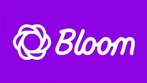Bloom 1311 Email Opt In Plugin For WordPress