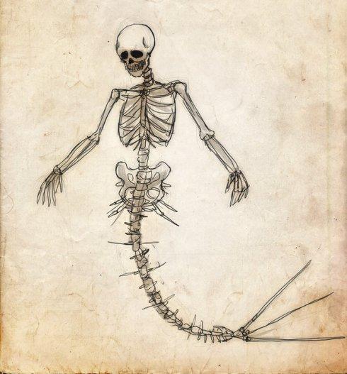 skeletonsss