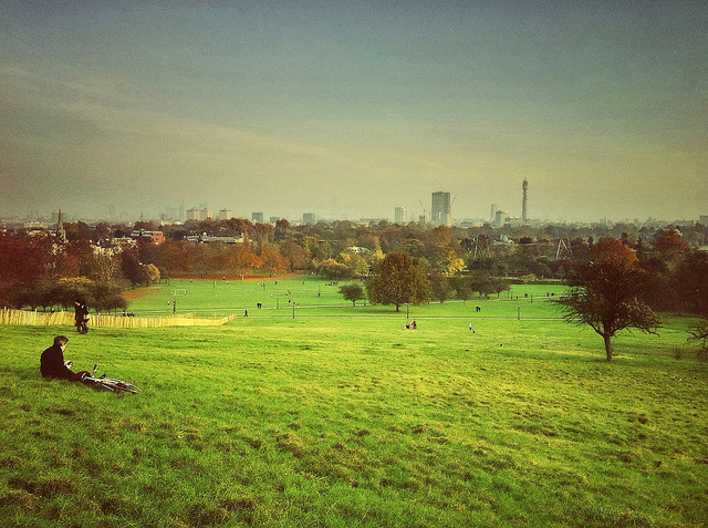 Primrose Hill (photo by Mike Rolls)