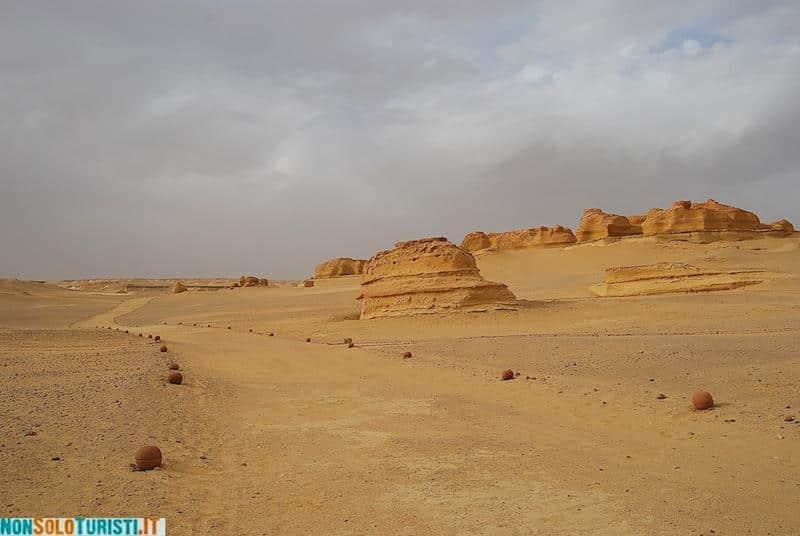 Wadi el Hitan, Egypt