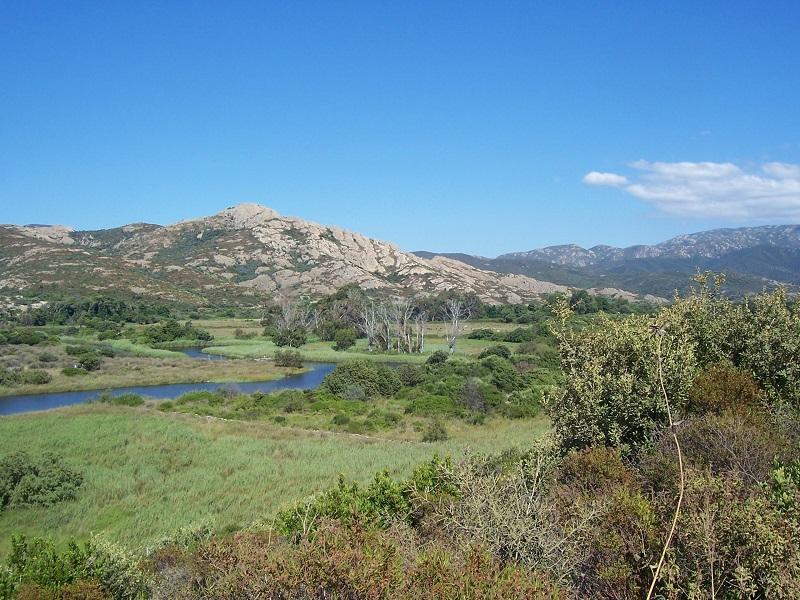 Corsica nature