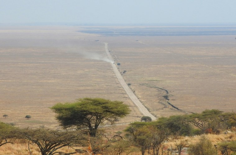 Safari in Tanzania: Discovering the Savannah by Jeep