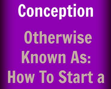 Birth of a Blog: Conception. Otherwise Known as: How To Start a Blog.