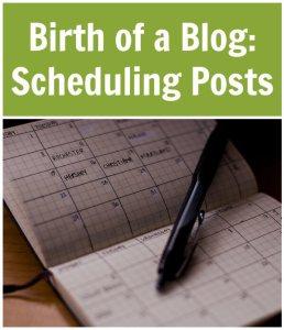 Birth-of-a-Blog-Scheduling-Posts