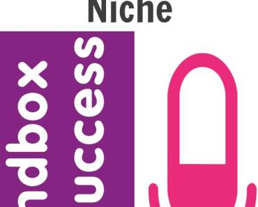 Sandbox To Success Podcast Episode 003 - All About The Niche