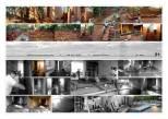 External Paving + landscaping + IPS floor + dado + Plywood Furniture...Jan 2005