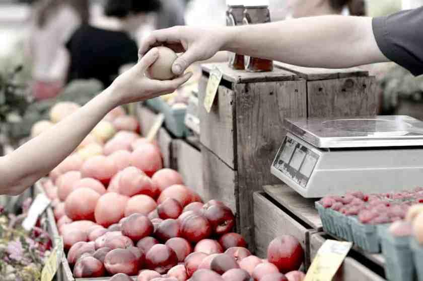 apples business buy 95425_result
