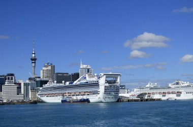 remote workers on princess cruise ships