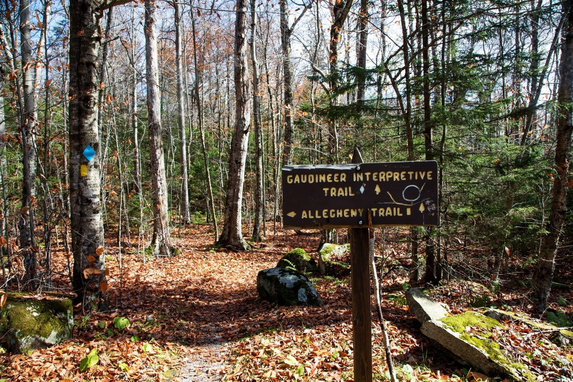 Outdoor adventure in West Virginia with New Remote Work Program