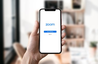Zoom hybrid models