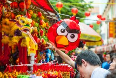 angry bird in china town