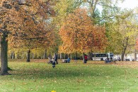London November, 014