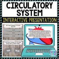 Circulatory System Interactive Google Slides™ Presentation | Digital