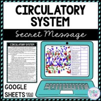 Circulatory System Secret Message Activity for Google Sheets™