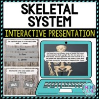 Skeletal System Digital worksheet pic