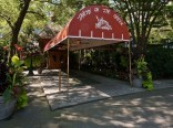 Tavern-on-the-Green-_Luis_Moro_Productions