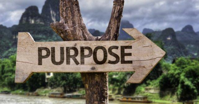 Purpose Driven Business