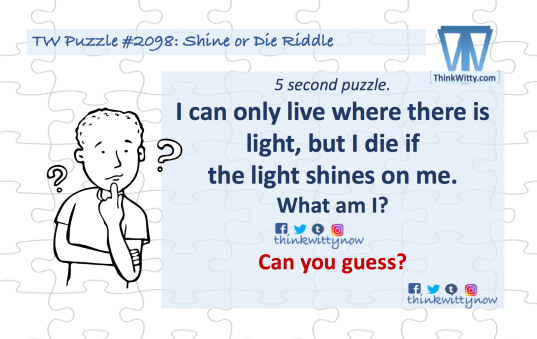 Puzzle 2098 thinkwitty.com -Shine or Die riddle