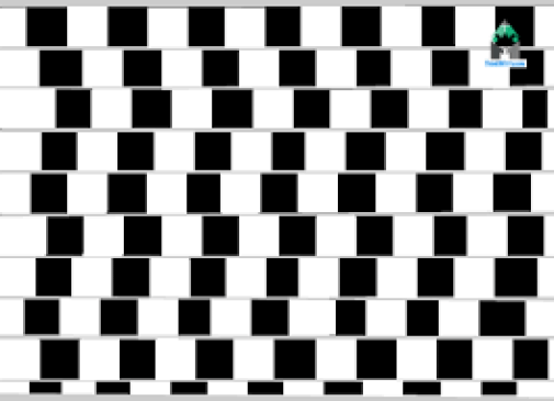 Optical Illusion thinkwitty.com - Non parallel line Grid Illusion