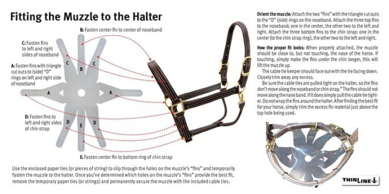 ThinLine Flexible Filly Slow Feed Grazing Muzzle howto