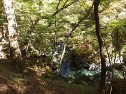 Irikawa river