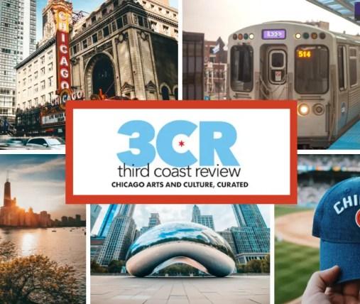 Literary kitty. Photo courtesy Andrew Gingerich.
