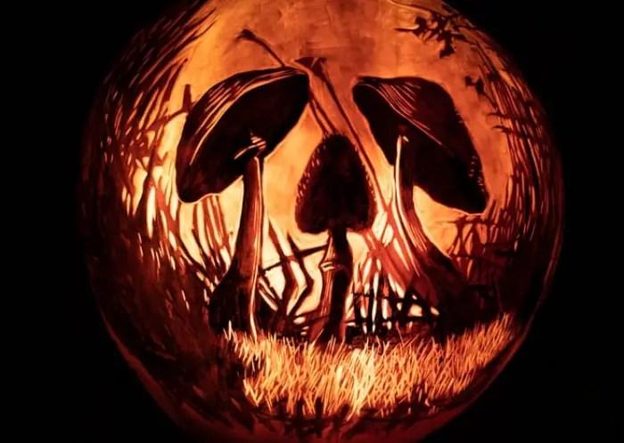 3CRPumpkinsSized-134