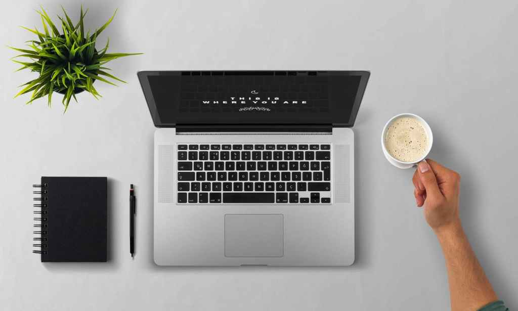 coffee cup with laptop and plant