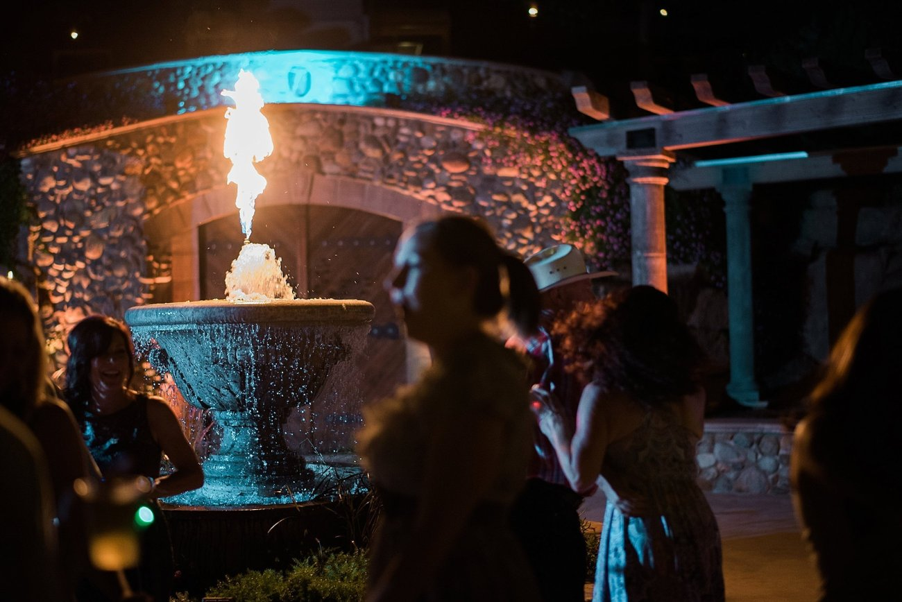 Erin + Marcel Third Element Photography & Cinema Fresno County Estate Wedding Hybrid Film Wedding Photographer_0059