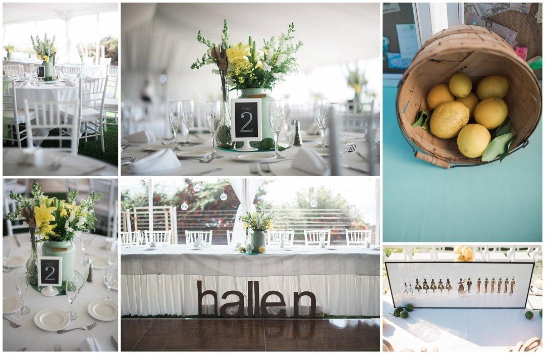 Ha & Allen Wedding Third Element Photography & Cinema Pismo Beach Cliffs Resort Central Coast Hybrid Film Wedding Photographer_0028