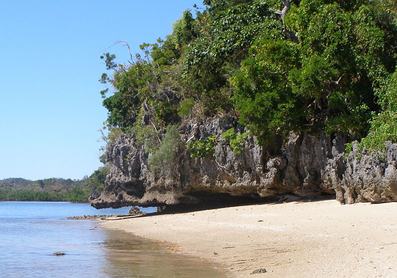 Lovely lush Madagascar. Image Source: Wikipedia Free Commons