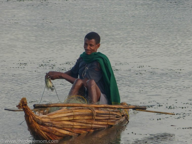 Papyrus boat fisherman on Lake Tana
