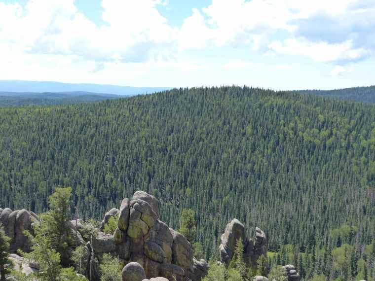 Mount Baldy Arizona