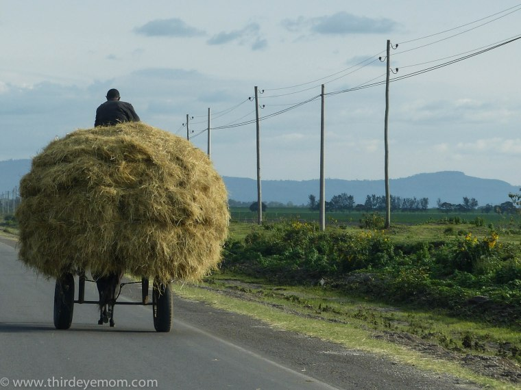Rural Ethiopia