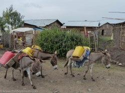 Carrying water in rural Ethiopia
