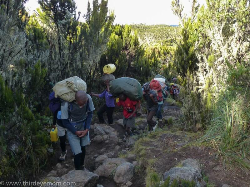 Machame Camp Kilimanjaro Tanzania