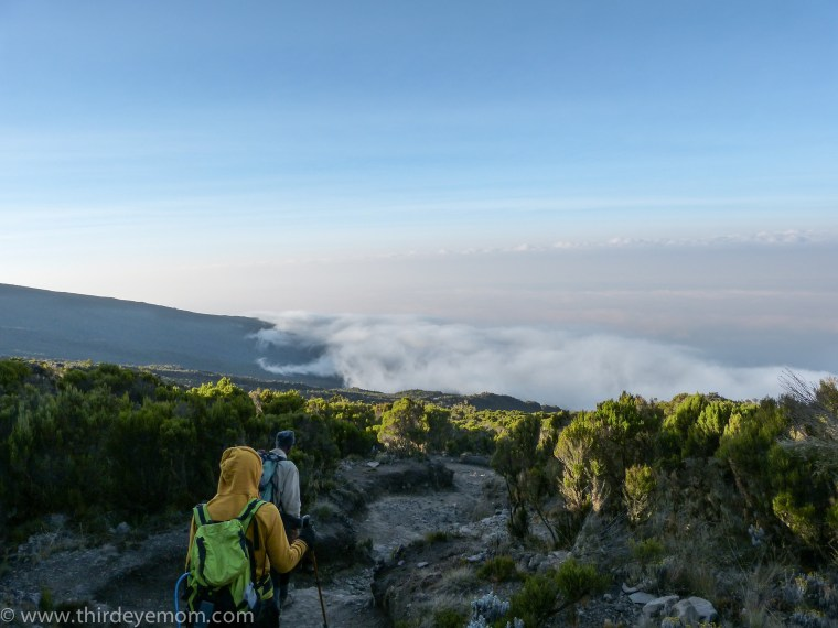 View descending Kilimanjaro