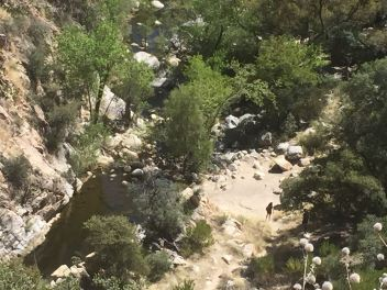 Hike to Hutch's Pool, Tucson, Arizona