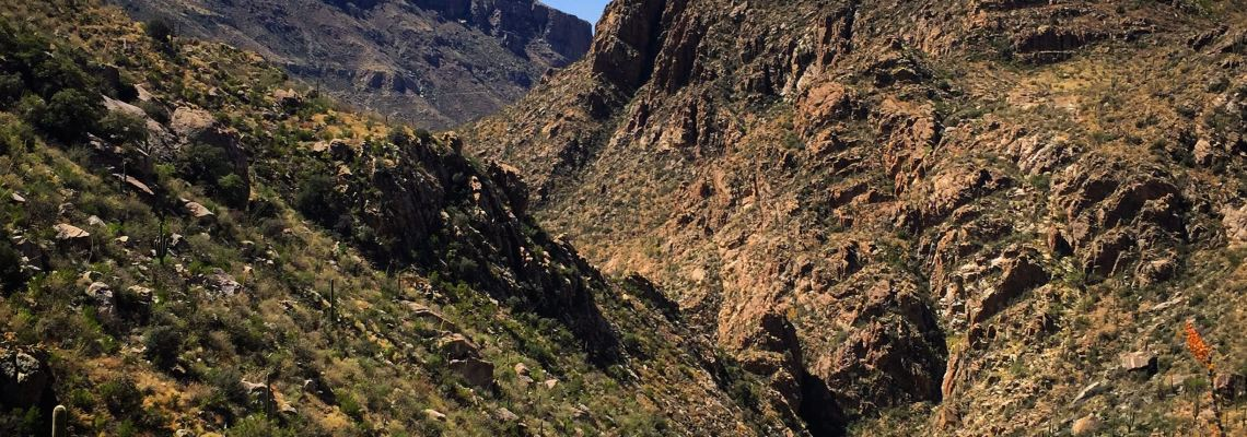 Sabino Canyon Tucson Arizona