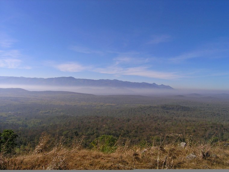 View of the Bandipur Tiger Reserve from a nearby hill (Photo credit: Nithila Baskaran)
