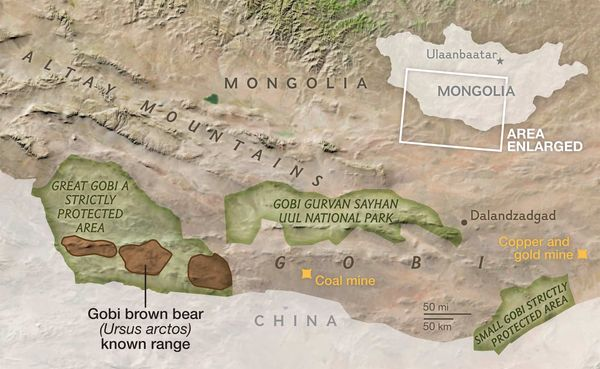National Geographic Gobi Desert
