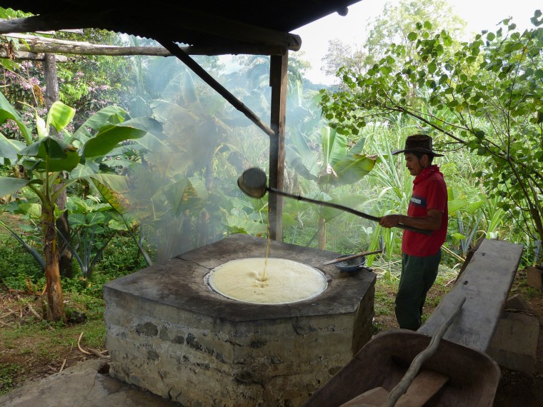 raditional Sugar Cane Milling in Costa Rica