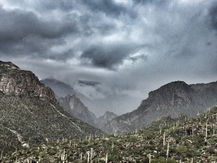 Sabino Canyon, Tucson, Arizona