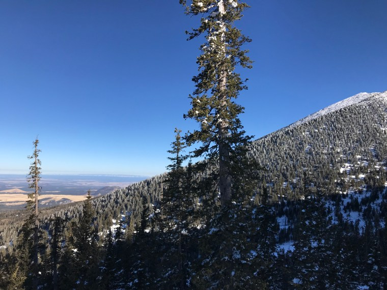 Arizona Snowbowl, Flagstaff, Arizona