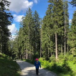 Hiking in Seefeld Austria