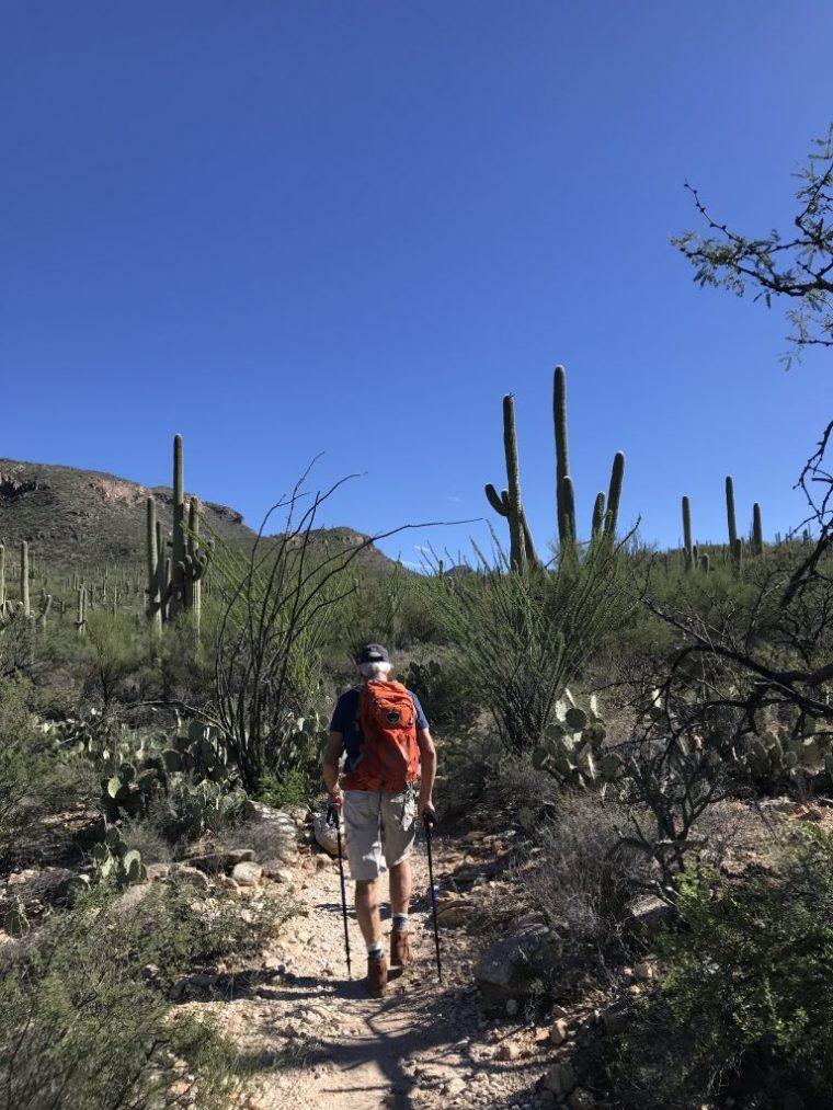 Blackett's Ridge Trail, Sabino Canyon, Tucson, AZ