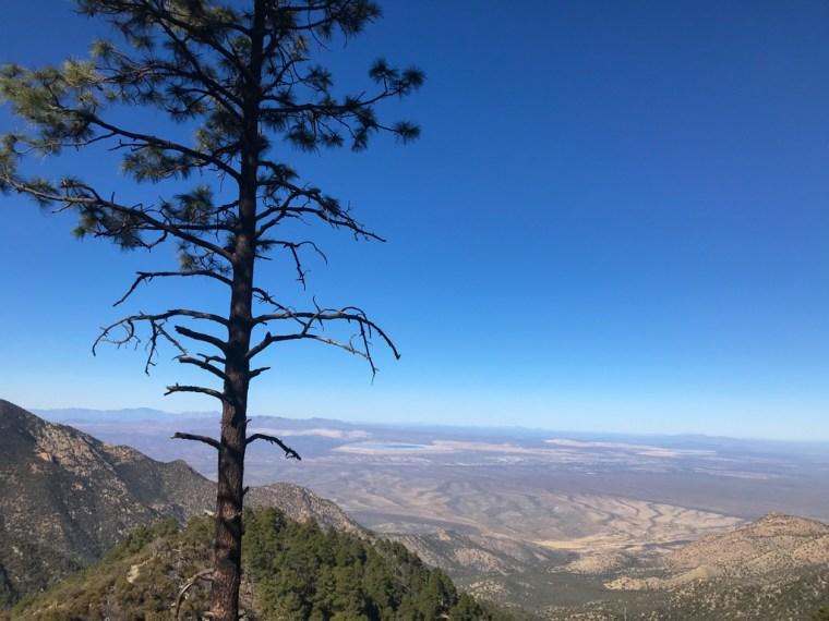 Old Baldy Trail, Mount Wrigtson, Tucson Arizona