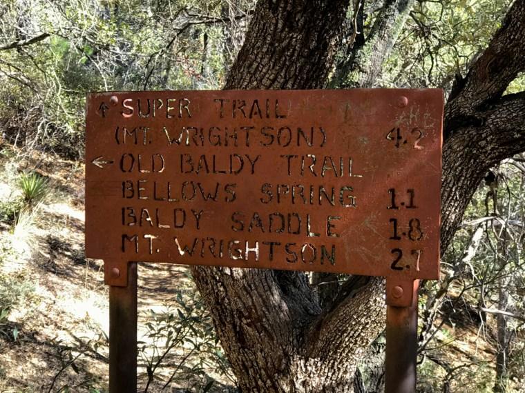 Views along the way go Old Baldy Trailhead, Mount Wrightson, Tucson, Arizona