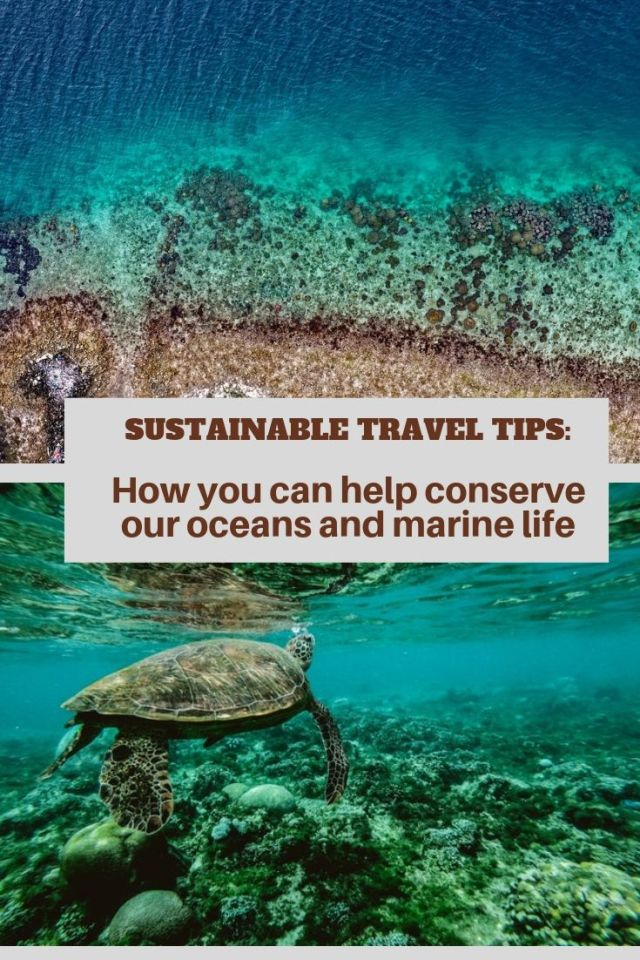 Sustainable Travel Tips How you can help conserve our oceans and marine life