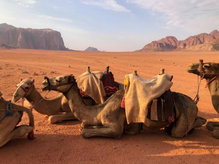 Bedouin camp, Wadi Rum, Jordan